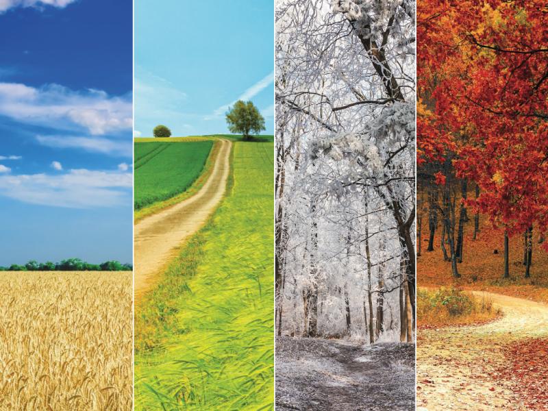 Conheça a nova cartela de cores da Italy inspirada na natureza